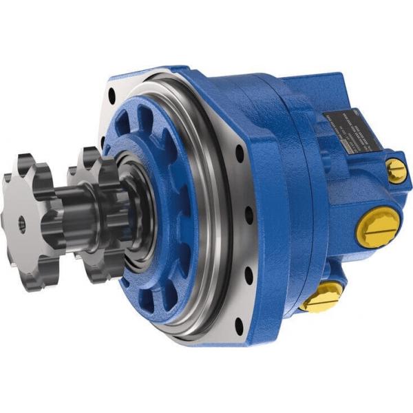 Радиально-поршневой двигатель для цепных передач MCR-S