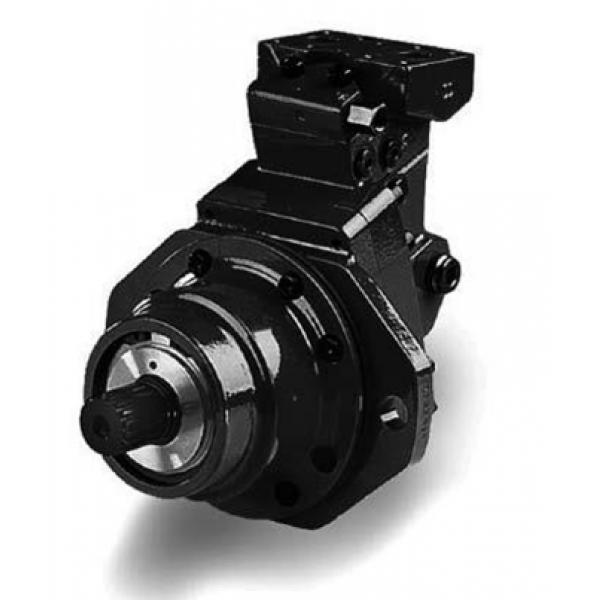 Гидромотор аксиально-поршневой T12